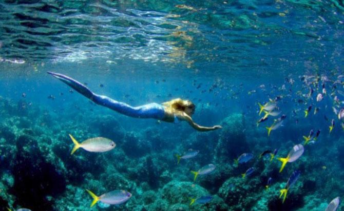 Морская дева плавает у берега.