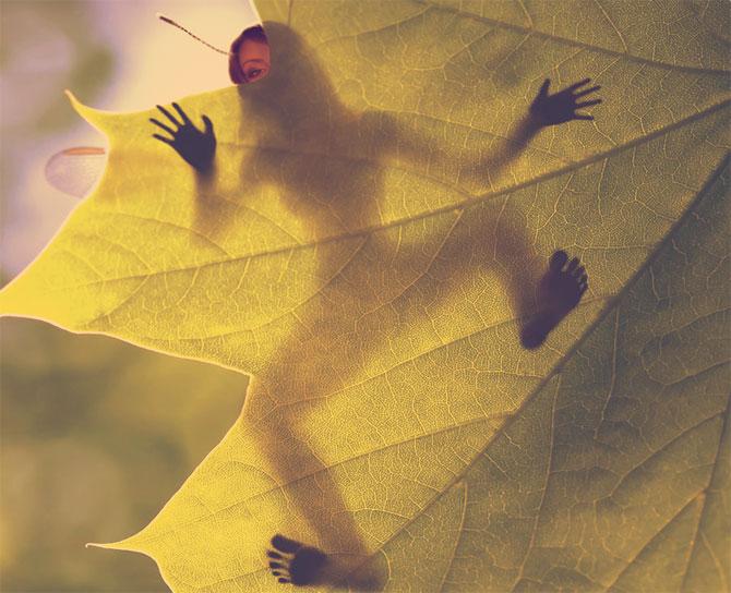 Малютка прячется за кленовым листом.